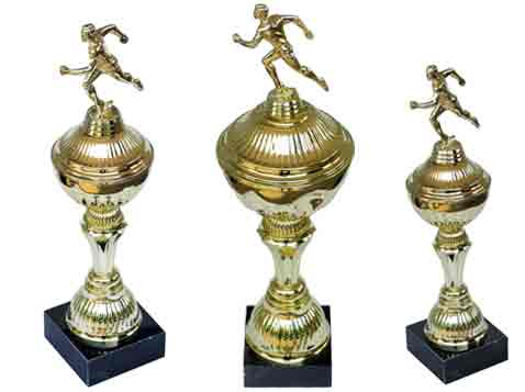 גביע הוקרה ראנר