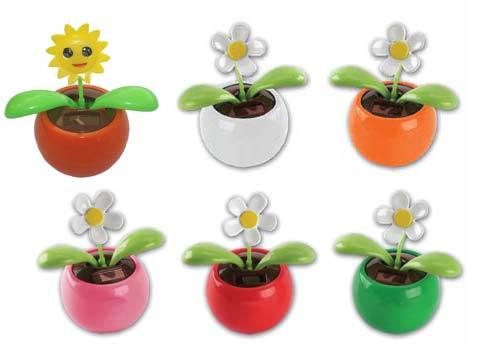 פרח סולרי ידידותי לסביבה