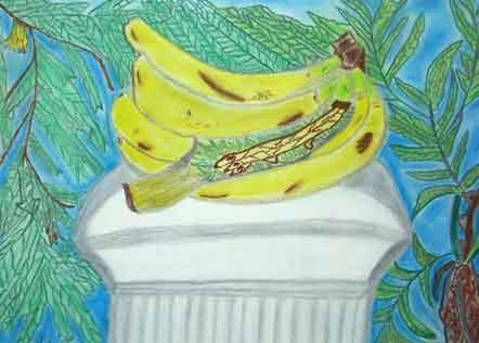 בננה רומית