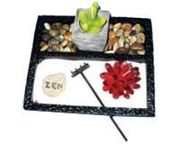 גן השלווה   jardin zen